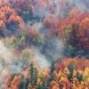 Cores de outono - última mensagem por ternopil